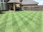 Offers the Viewers an Attractive Stripped Lawn
