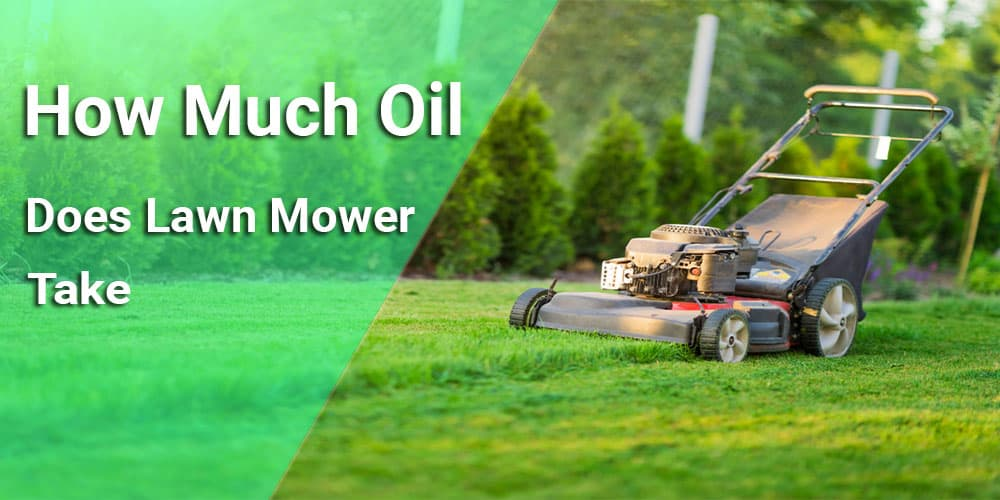 how-much-oil-does-lawn-mower-take
